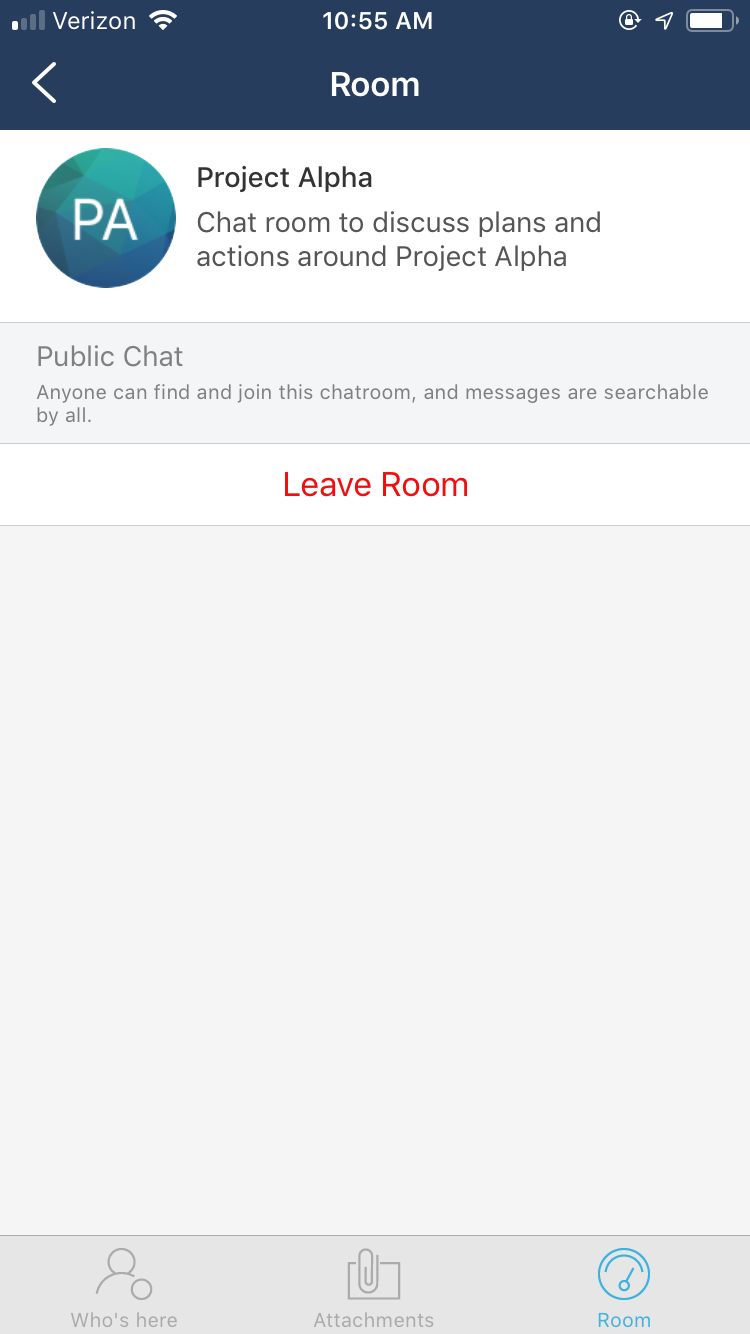 ios_messages_chatdetails_3.PNG